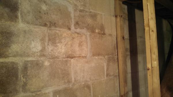 Painting Block Basement Wall Community