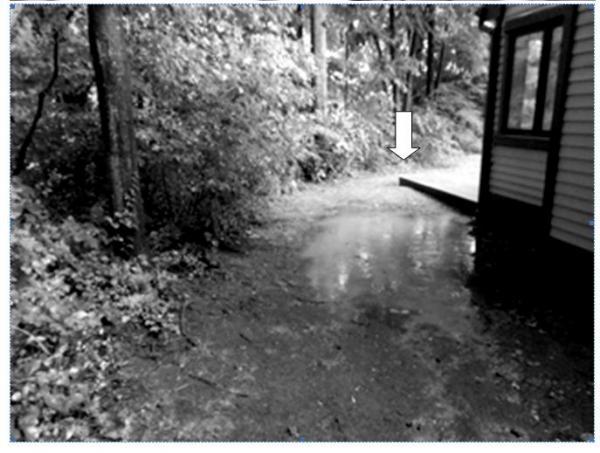 Name:  pond & dam.jpg Views: 935 Size:  46.6 KB