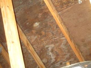 Name:  attic1.jpg Views: 2302 Size:  29.7 KB