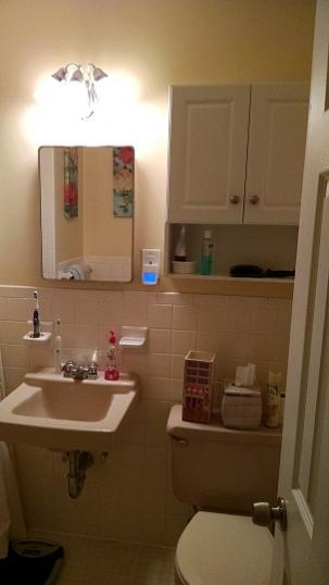 existing bathroom photos with some ideas for redo