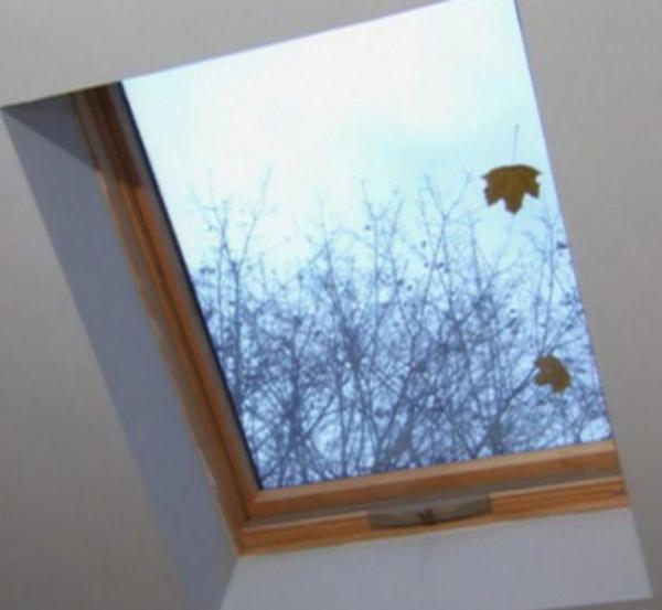 Name:  window.jpg Views: 68 Size:  26.4 KB