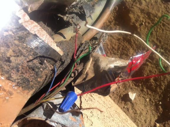 My Dogs Chewed Through My Ac Wiring  Please Help