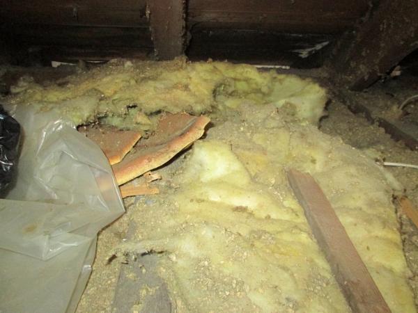 loft insulation identification. Black Bedroom Furniture Sets. Home Design Ideas