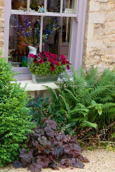Name:  Windowbox-Garden-36149c.jpg Views: 964 Size:  51.4 KB