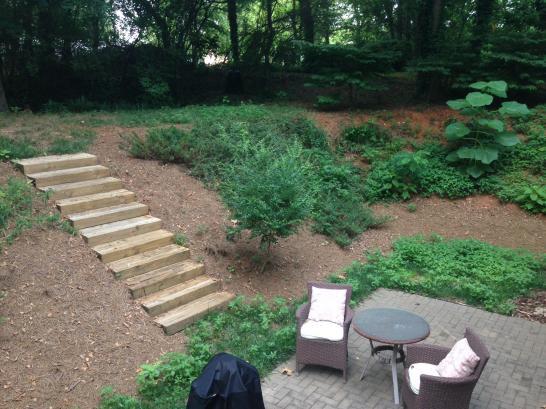 Landscape Advice Doityourself Com Community Forums