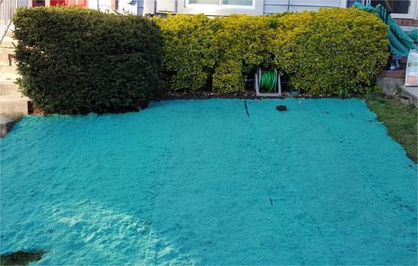 Name:  lawn.jpg Views: 46 Size:  46.7 KB