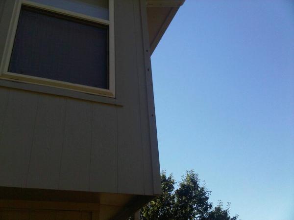 Siding Repairs Woodpecker Damage Siding Repair