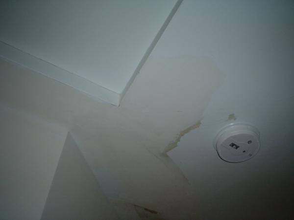 Peeling Interior Paint: Cracking/peeling Ceiling Paint