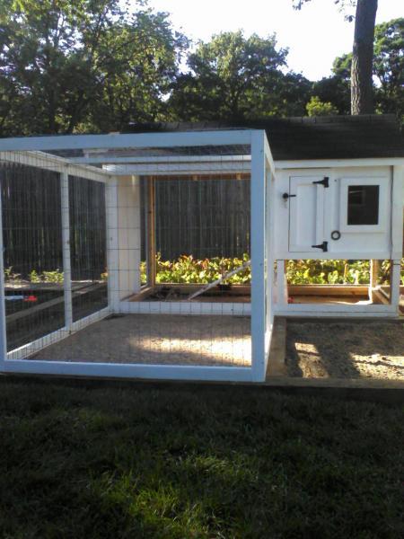 Chicken Coop Roof Weight Issue Doityourself Com