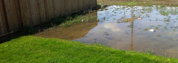 neighbours sump flooding yard community forums