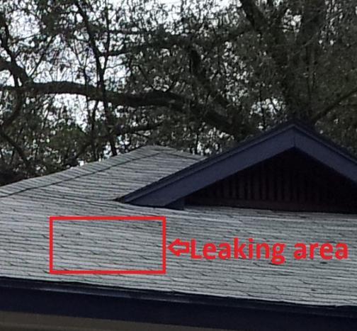 Name:  roof2.jpg Views: 200 Size:  48.1 KB