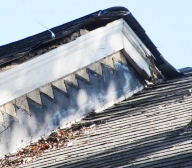 Name:  roof2.jpg Views: 113 Size:  50.0 KB