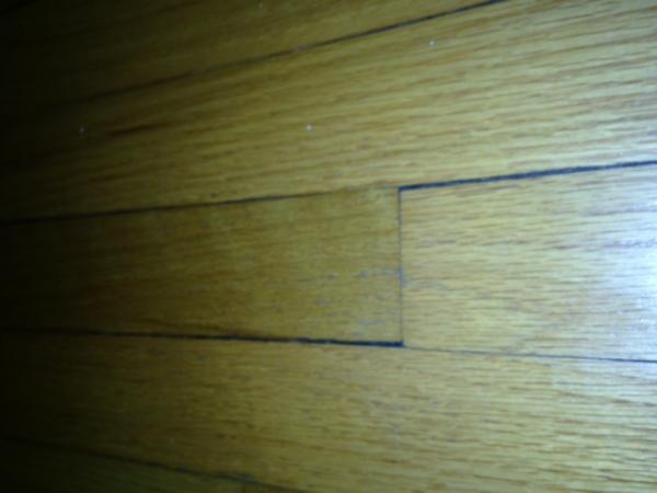 Name:  floor 2.jpg Views: 226 Size:  23.6 KB