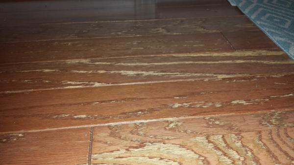 Restoring worn engineered flooring Worn wood floors