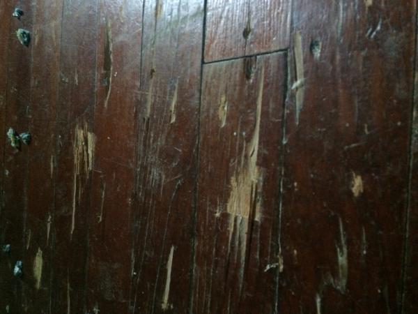 Can I Refinish These Hardwood Floors