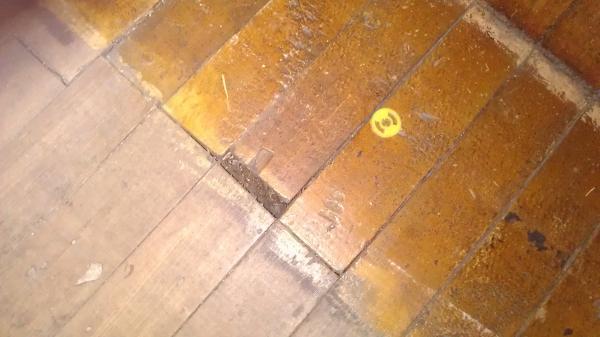 Restore Hardwood Floors Flooring Ideas Home