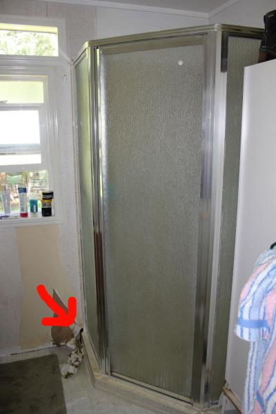 Shower Leak Coming From Behind Wall Doityourself Com