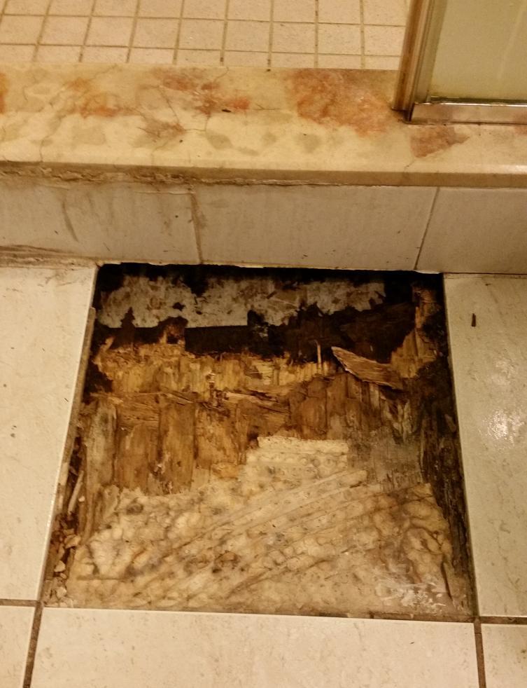 Advice on repairing bathroom floor tile - DoItYourself.com ...