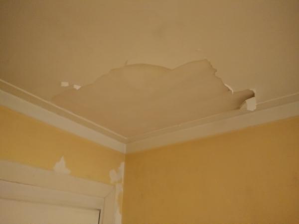Name:  ceiling03.jpg Views: 162 Size:  9.8 KB