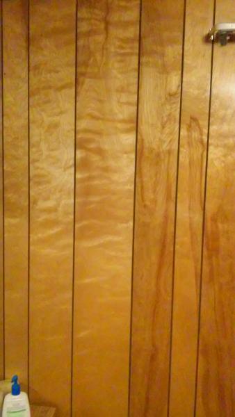 stunning interior wood wall paneling