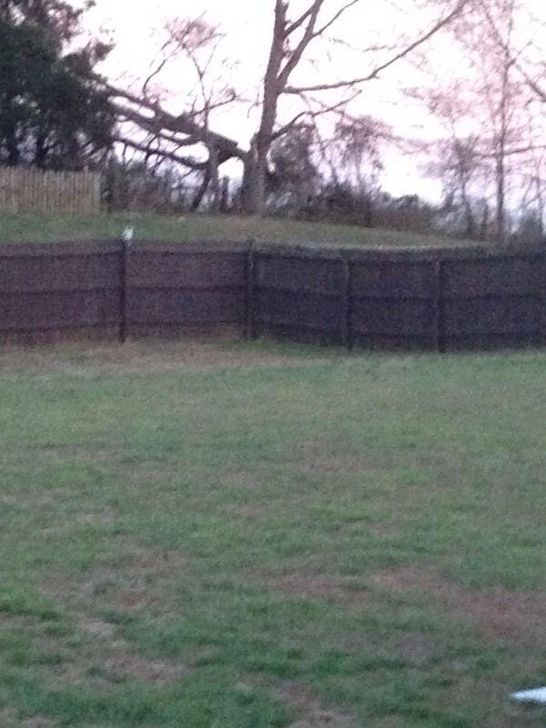 Diy Privacy Fence Corner Storage Shed Doityourself Com