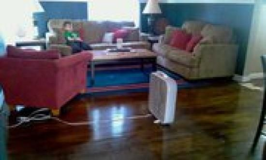 Wood Floor Renovation